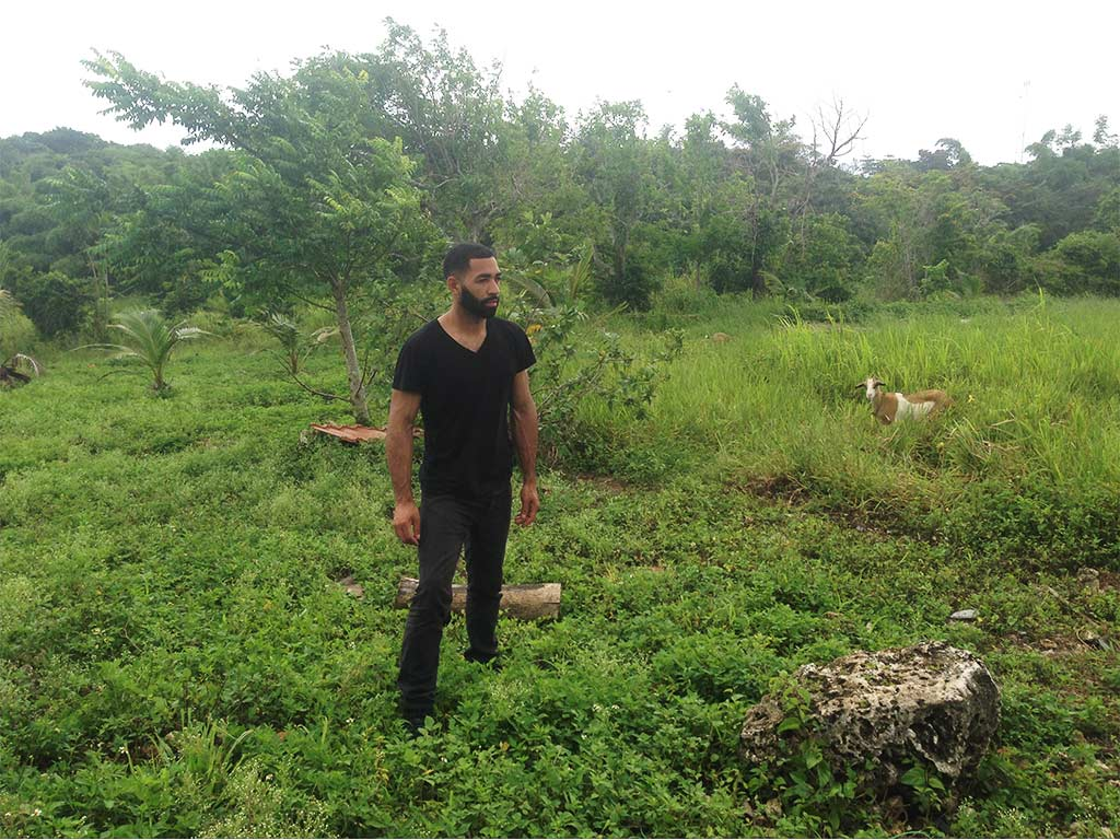 Solo travel with a goat and insurance in Jamaica