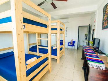 hostels in cancun