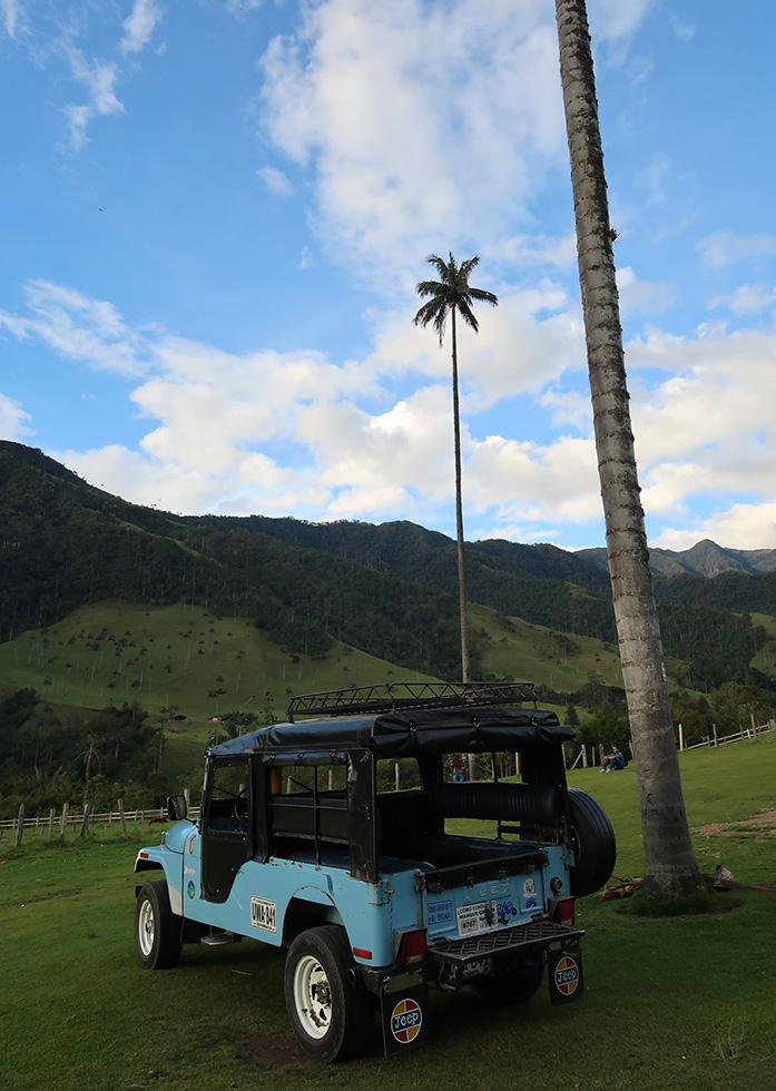 cocora valley tour colombia