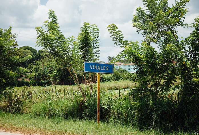 travel to cuba guide vinales