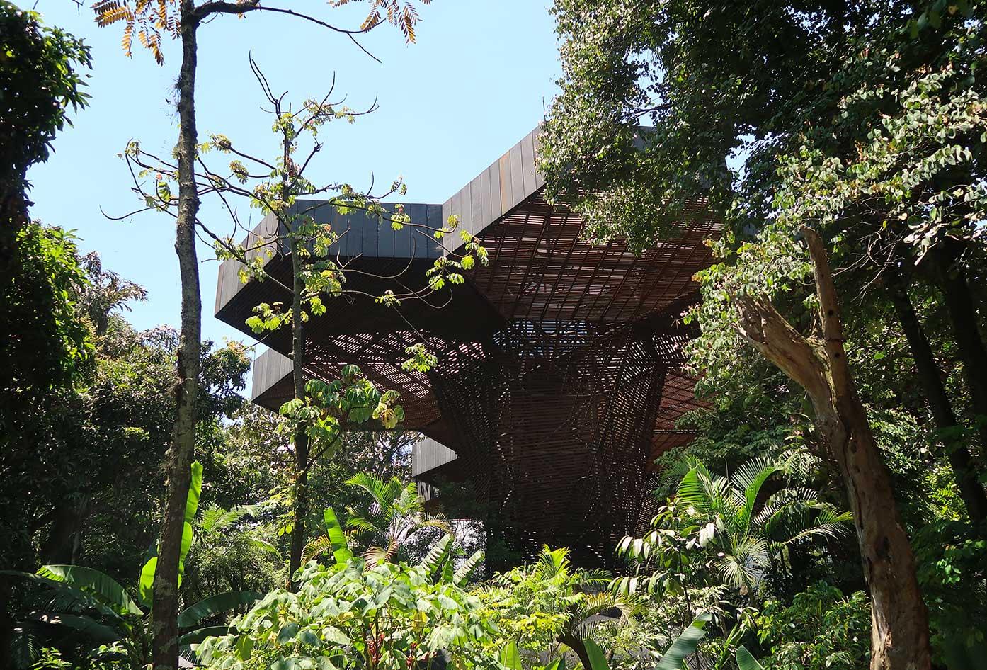 what to do medellin botanical gardens