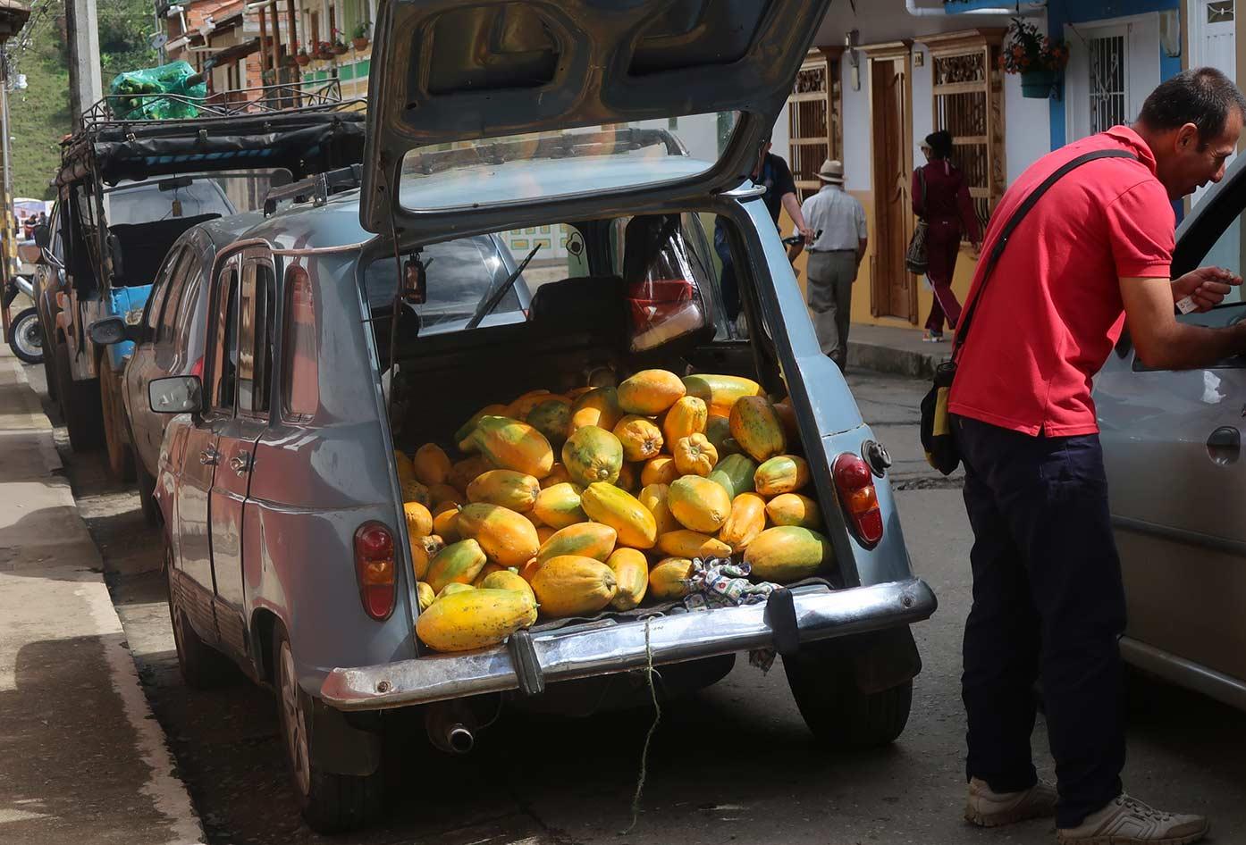 colombia papaya