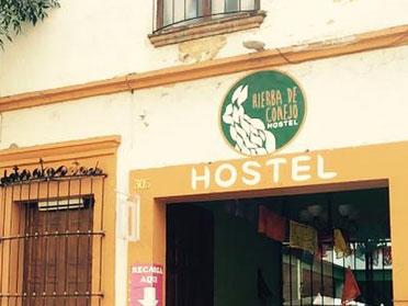 hostels in oaxaca