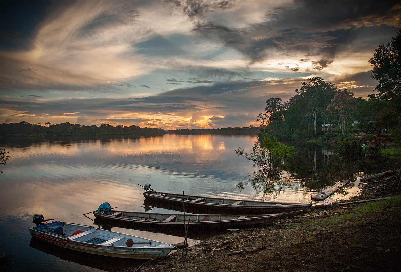 colombian amazon