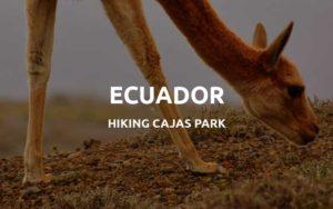 ecuador cajas park