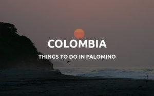 palomino colombia
