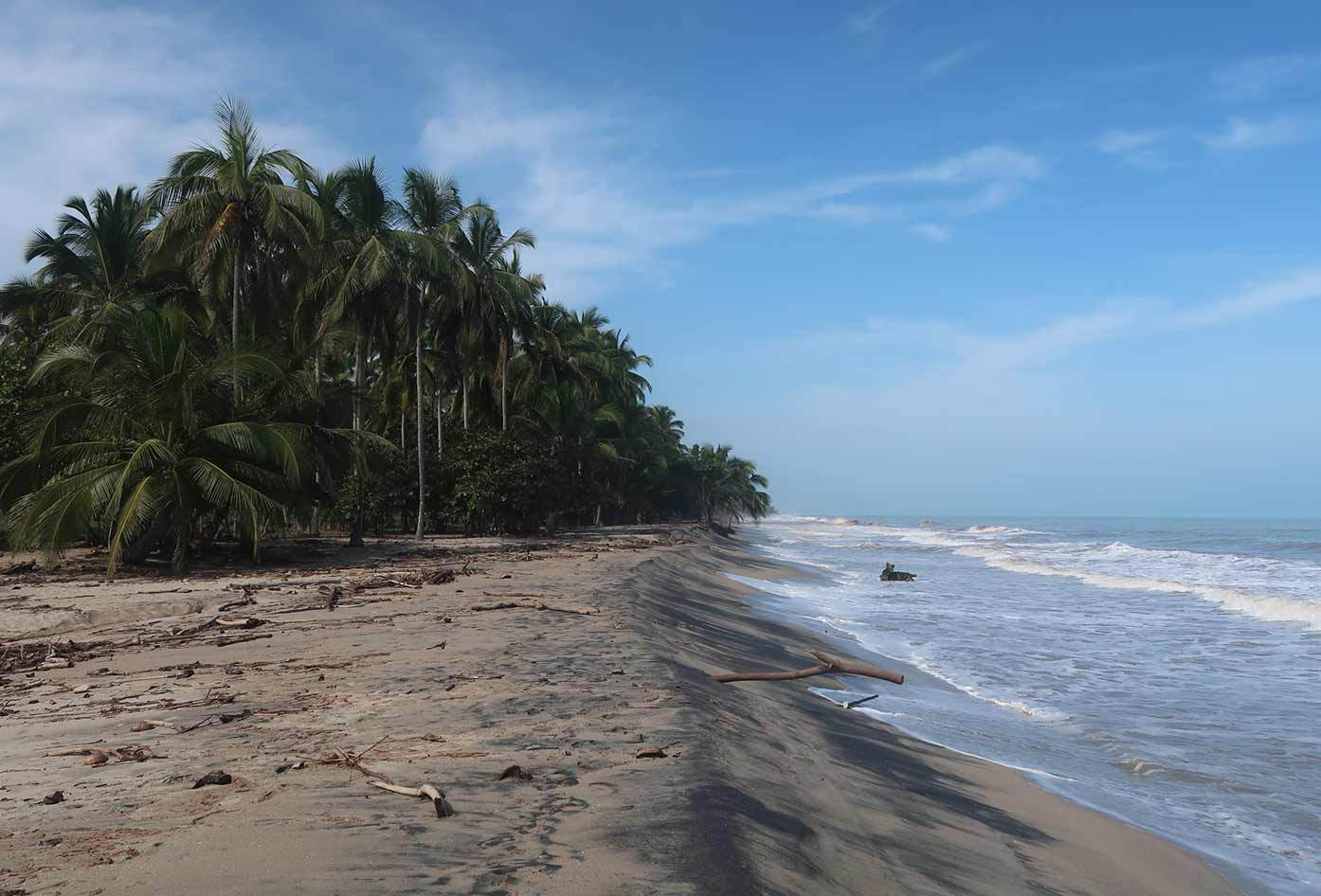 palomino beach colombia