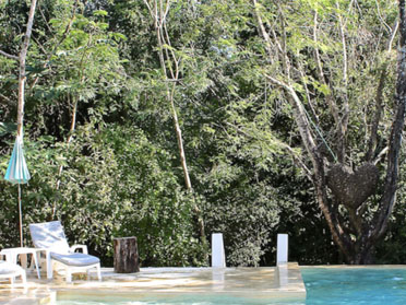jungle hotel akumal