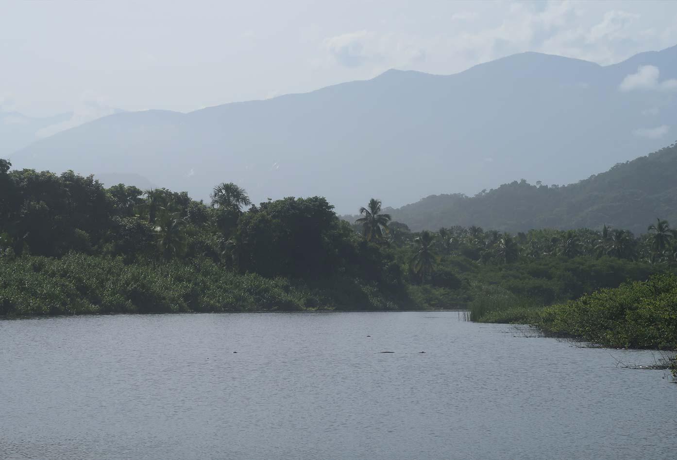 palomino river