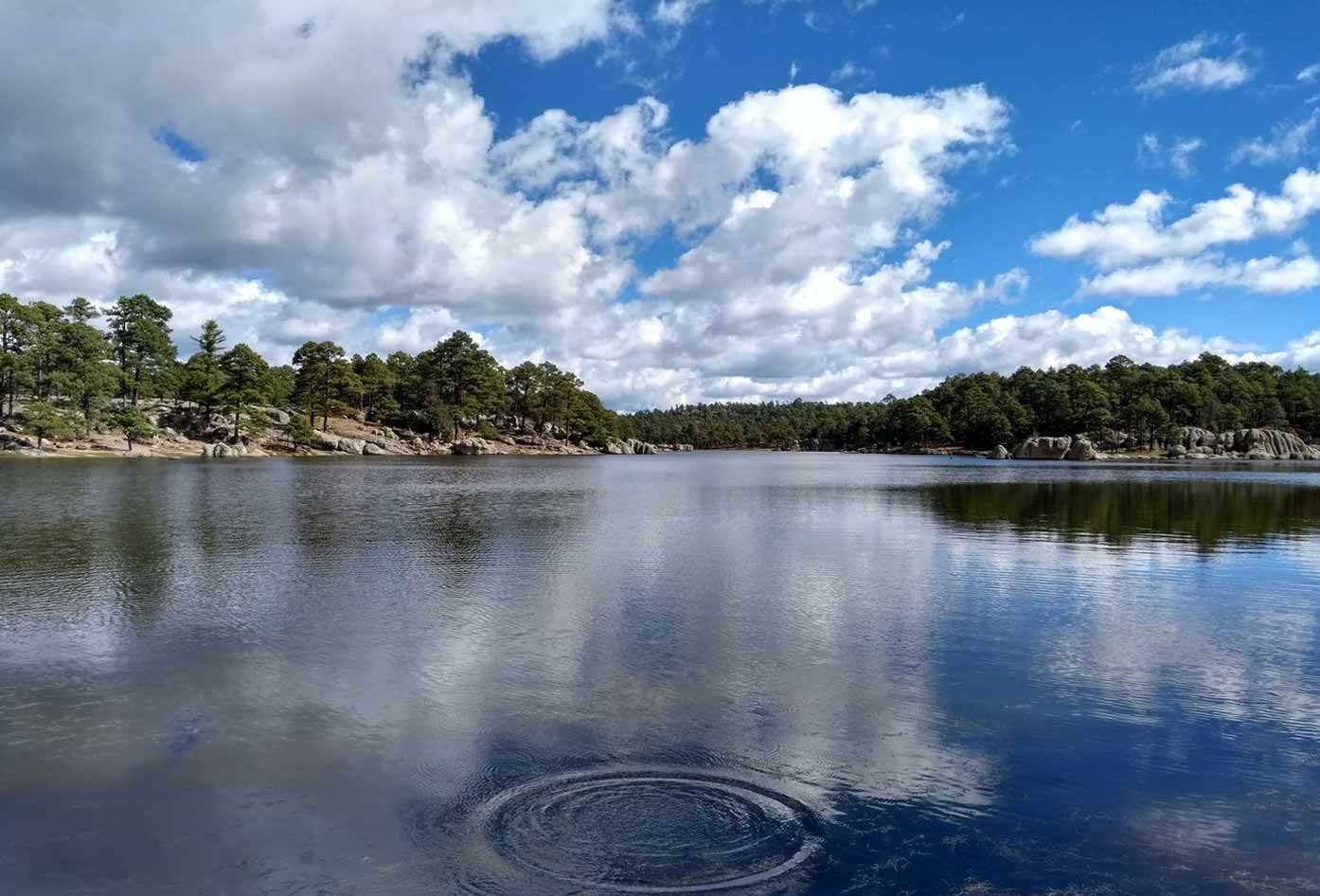 lake arareco