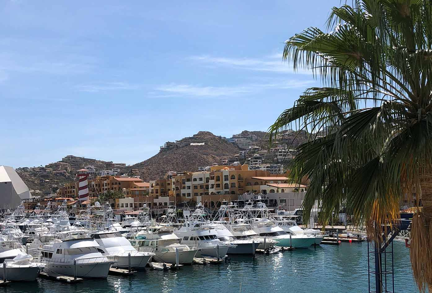 cabo san lucas best time to visit