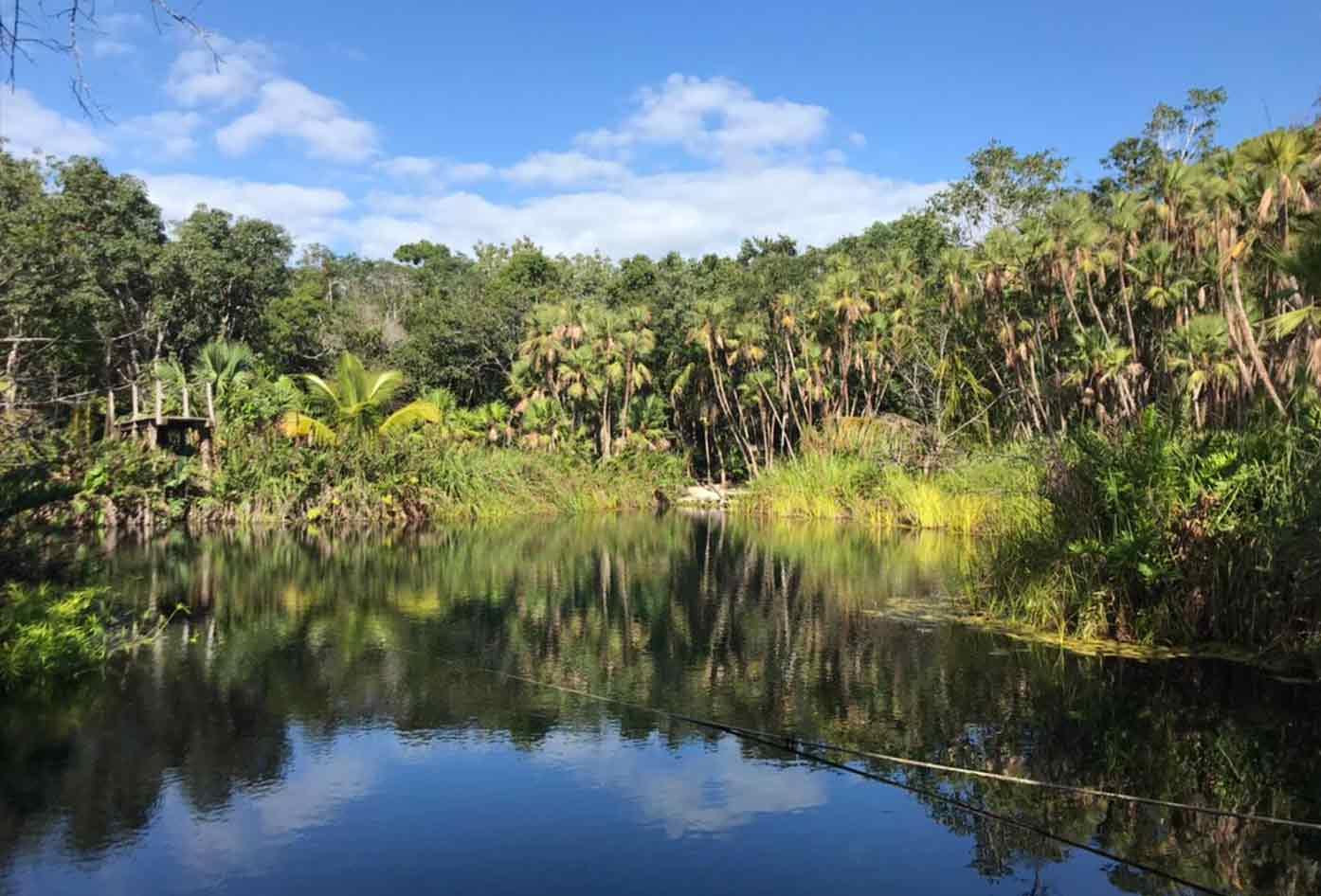 cenotes crystal mexico