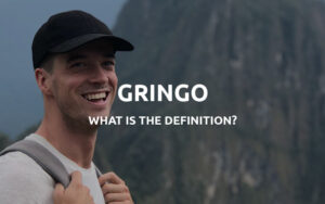 gringo definition