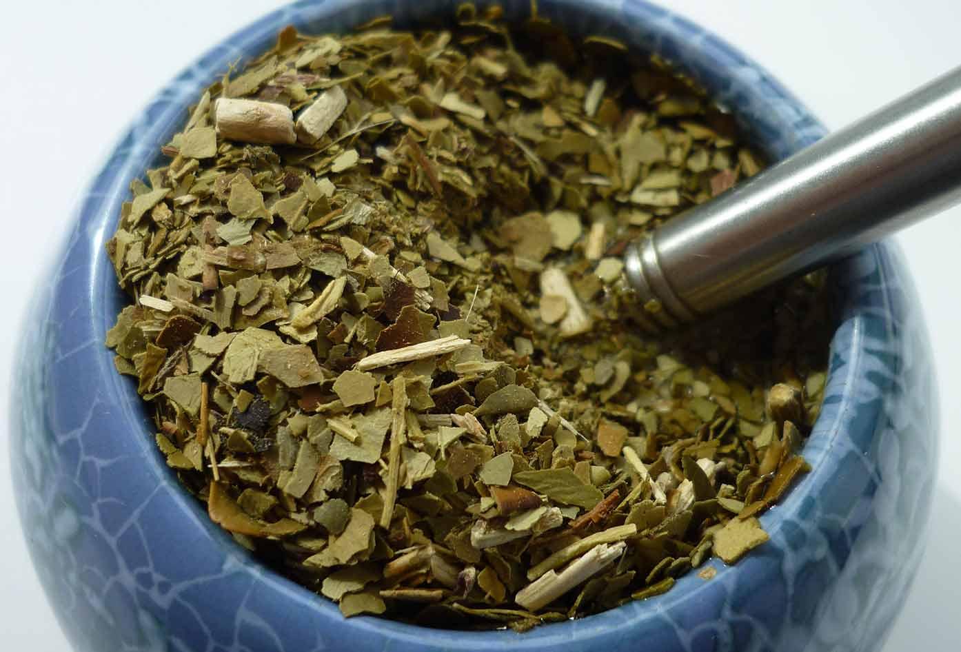 yerba mate leaves