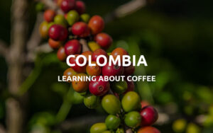 colombian coffee featured