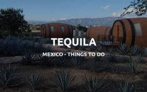 things to do tequila mexico